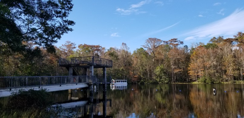 Dive Tower at Wakulla Springs, Florida. A boat can be seen in the distance.