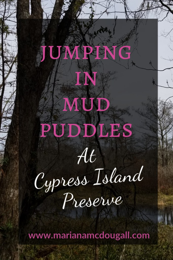 Jumping in Mud Puddles at Cypress Island Preserve, www.marianamcdougall.com. Picture of swamp and trees at Cypress Island in background.