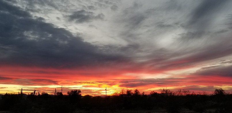 White-gray clouds above a pink and orange sunset. The shadows of cacti can be seen below.