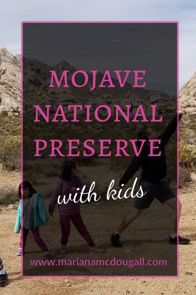 Mojave Nataional Preserve with kids