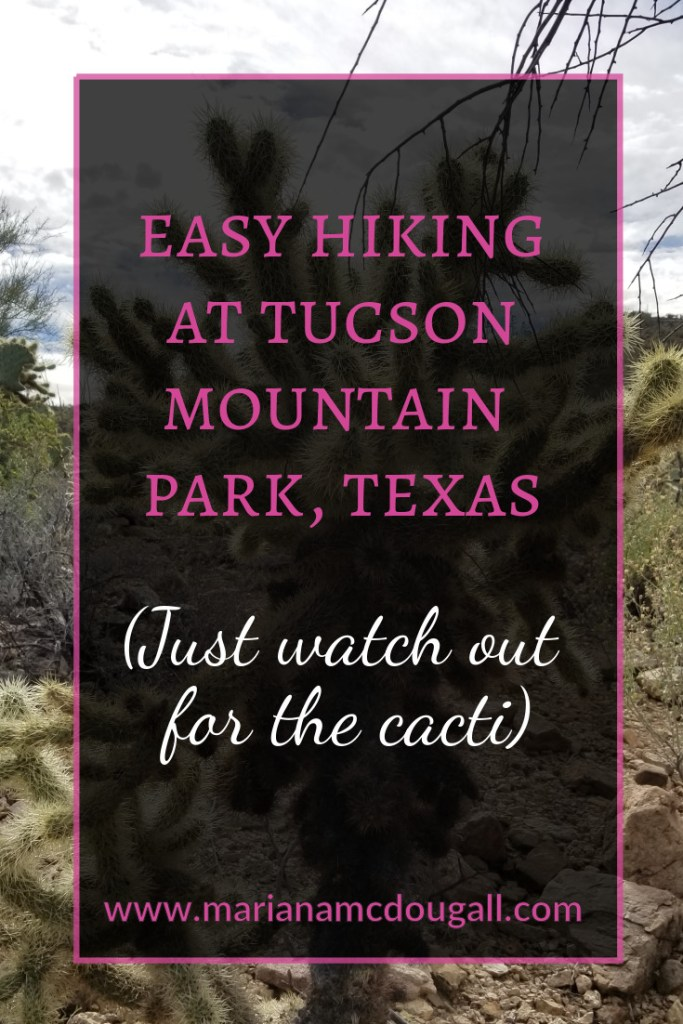"Pinterest title image. Pink and white lettering read: ""Easy hiking at Tucson Mountain Park,Texas Just watch out for the cacti), www.marianamcdougall.com. A picture of a chollo cactus is the background photo. Photo by Mariana Abeid-McDougalls"