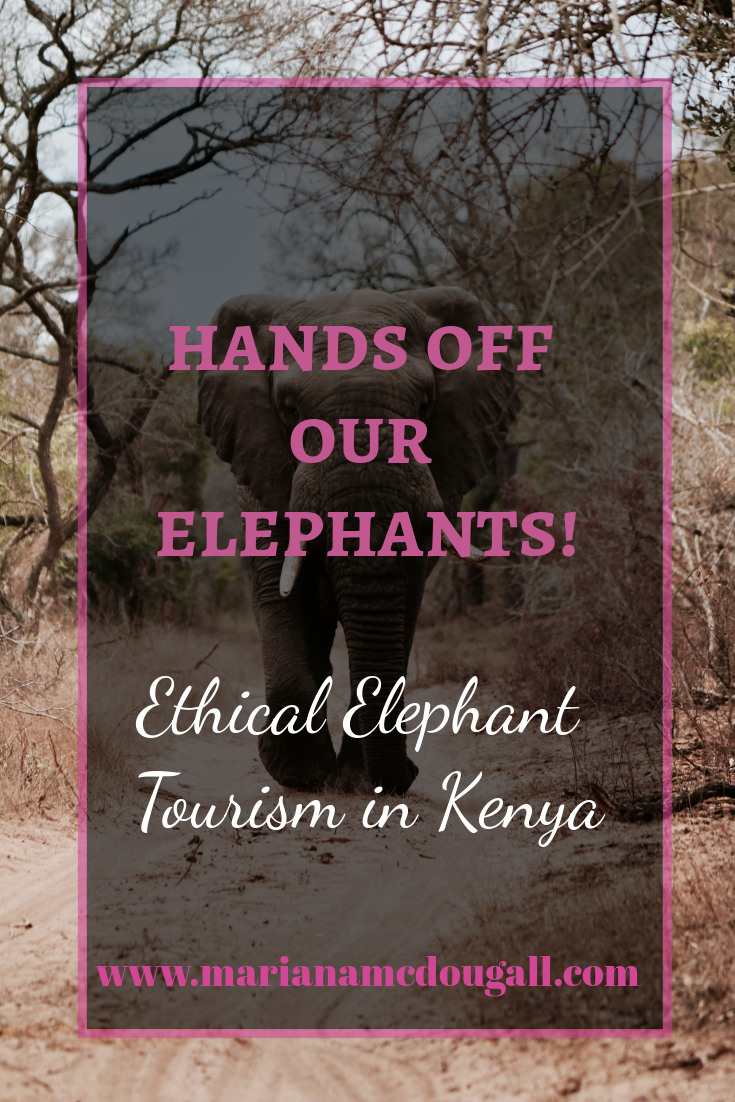 Hands Off Our Elephants! Ethical Elephant Tourism in Kenya, www.marianamcdougall.com