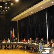 Ședința Adunării Generale a Euroregiunii Dunăre-Criș-Mureș-Tisa, martie 2013