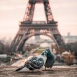 Europas 20 mest romantiske reisemål