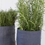 Selvvanningsbag til planter som trenger mye vann
