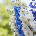 BORDDEKKING: Blomstrende ideer til 17.maibordet