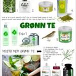 GRØNN TE – for god helse, skjønnhet, duft og smak