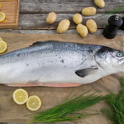 GUIDE: De beste urtene til fisk