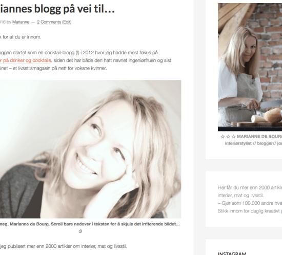 Marianne om Mariannes blogg