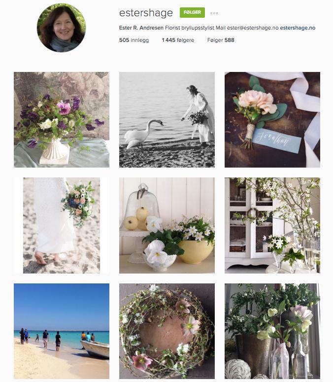 Mariannes blogg - denne ukas nye følgere på Instagram 03