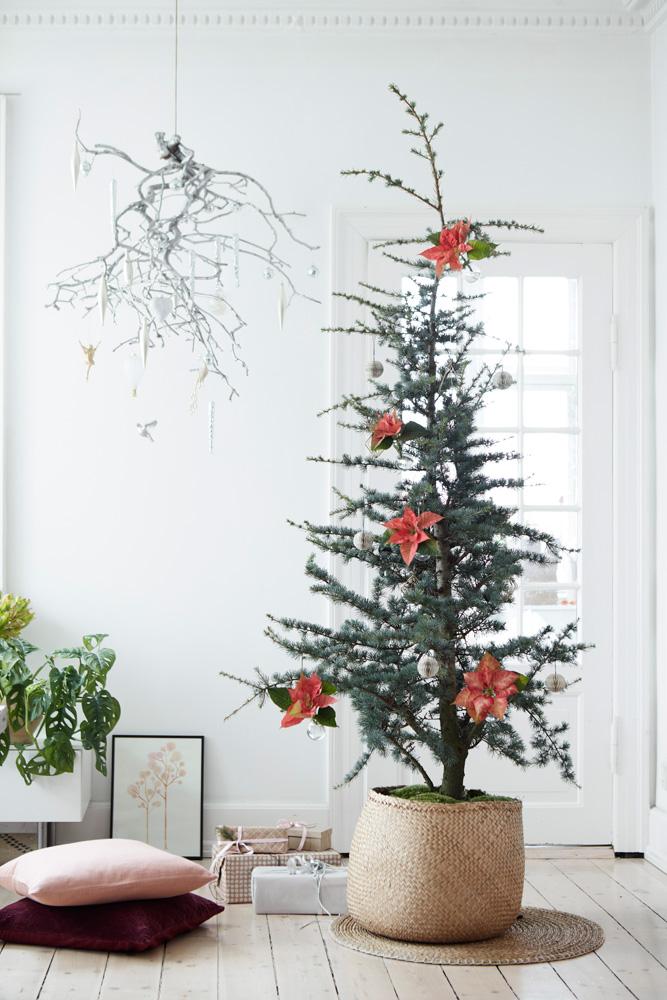 Juletre med pynt av lakserosa julestjerner.