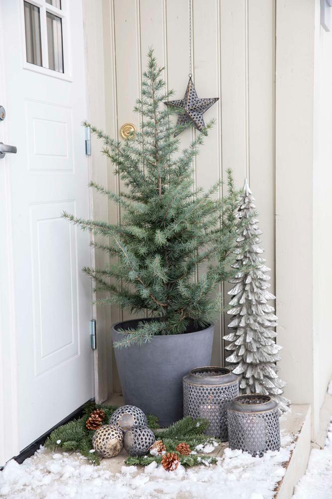 Julepynt i inngangspartiet: Sedertre, juletre, lykt og moseballer.