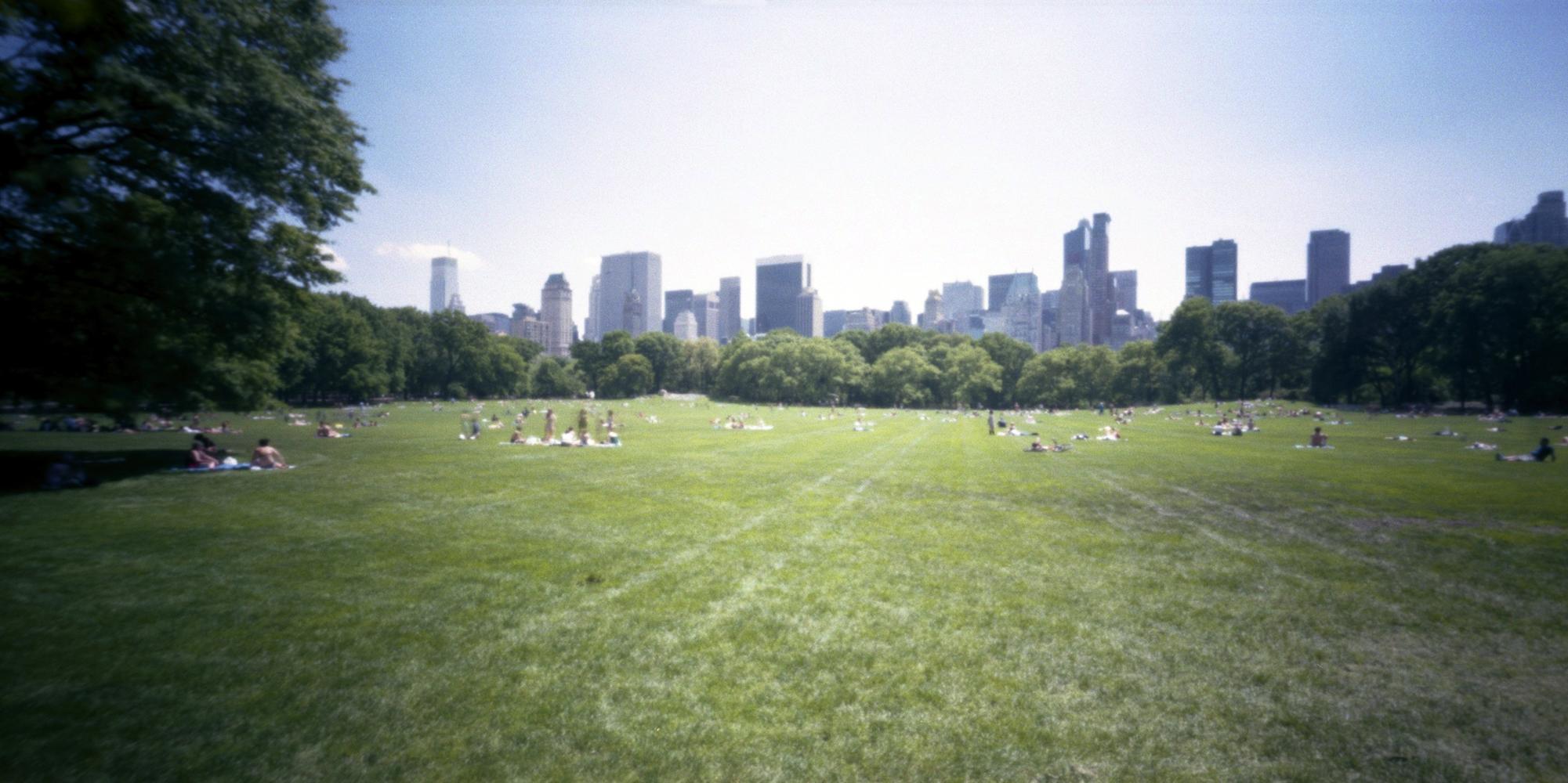 Central Park, New York, USA.