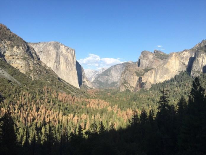 Yosemite National Park - ett hyllningsinlägg