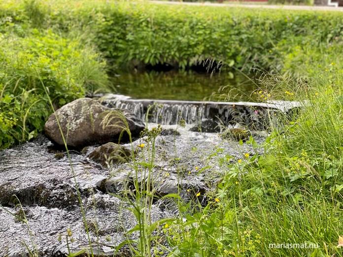 Bäck i Klövsjö