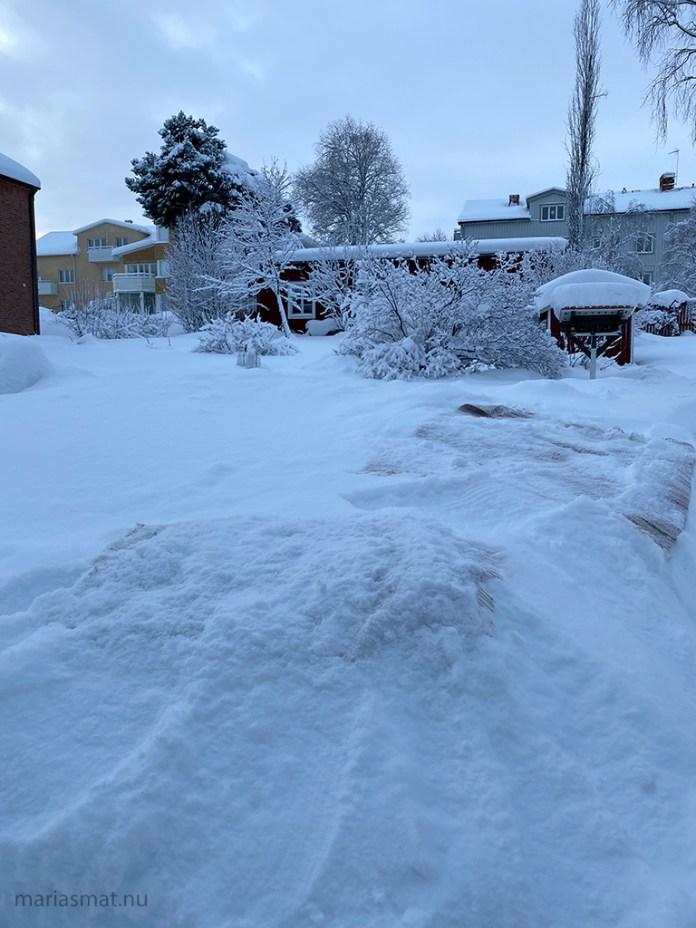 Snötvätta dina mattor