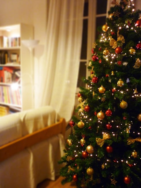 Creando nuestras tradiciones: Poner el árbol de navidad en una tarde entre familia, amigos y chocolate caliente con crema montada.