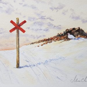 Akvarell av Marie Andersson, Fjällripa
