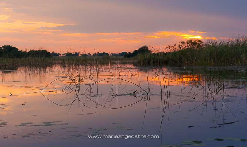 Botswana, coucher de soleil sur le delta de l'Okavango © Marie-Ange Ostré