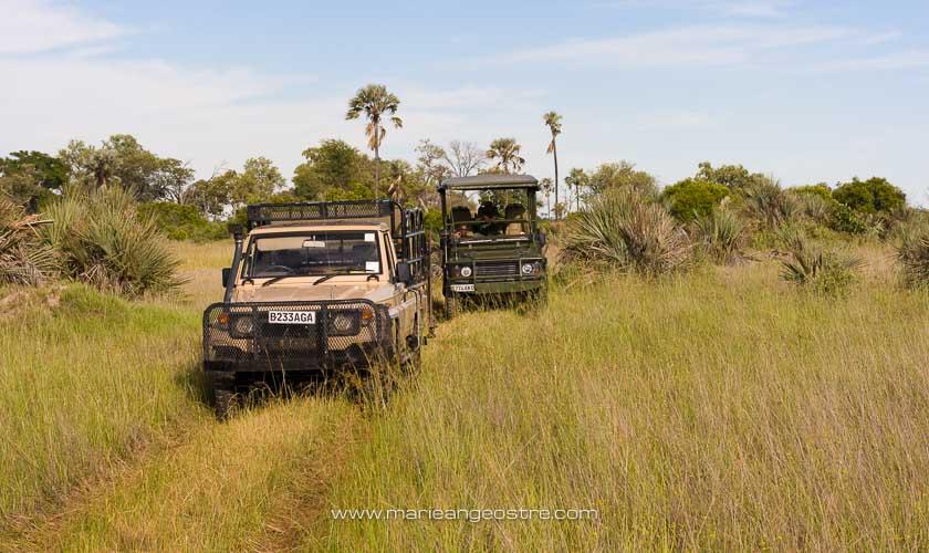 Botswana, véhicules des rangers dans les marais de l'Okavango © Marie-Ange Ostré