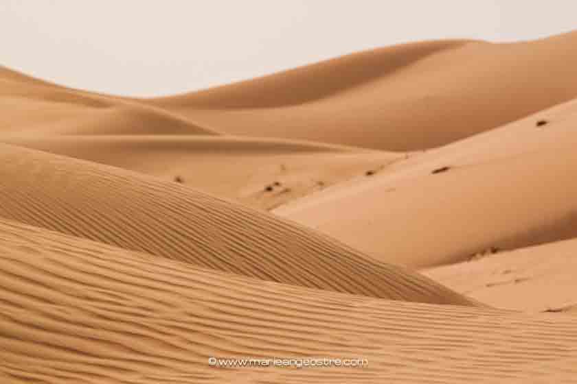 Désert d'Abu Dhabi ©Marie-Ange Ostré