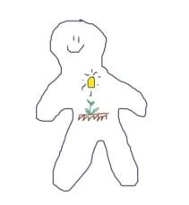 plants13