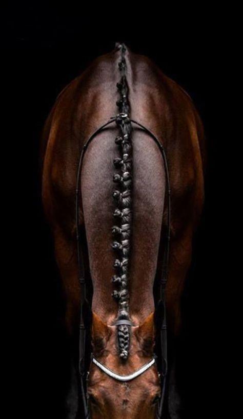 flätor_häst