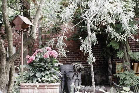 Garden-Apokekarns