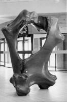 No 74 Œuvre d'océan / Ocean Bone (1983). Photo Dennis Mills. h = 225 cm