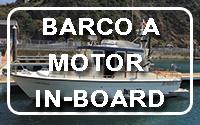 Barco a Motor In-Board