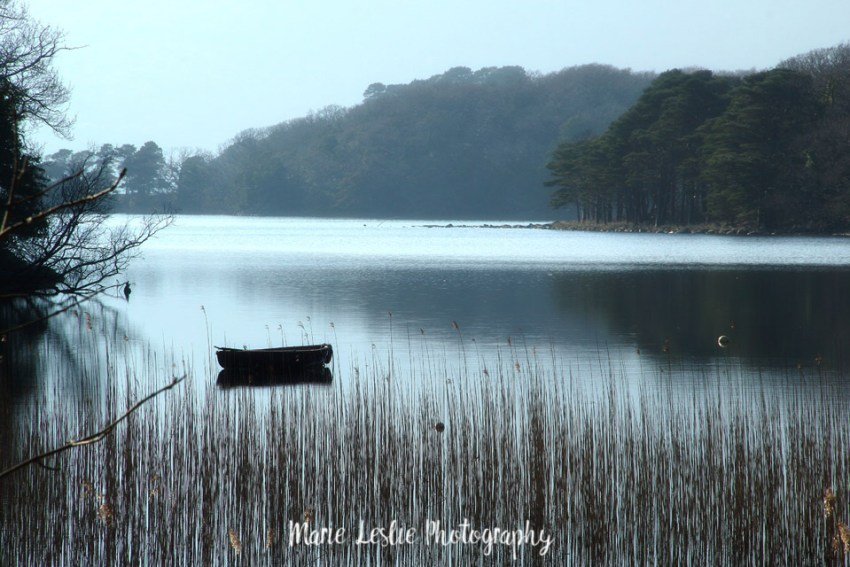 Rowboat on Muckross Lake