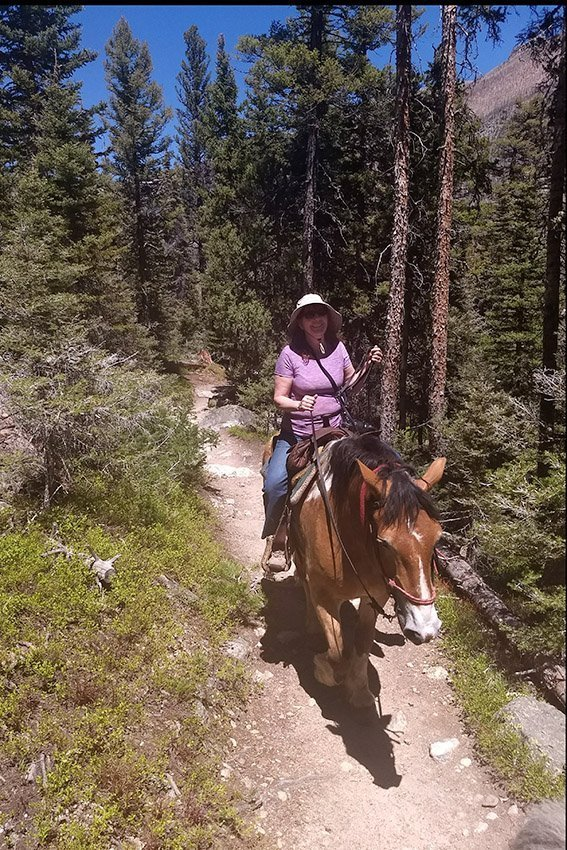 Riding Horses in Rocky Mountain