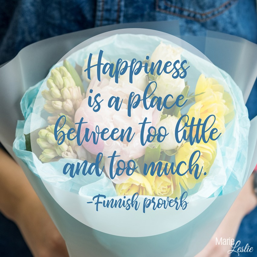 Happiness is a place between too little and too much. -Finnish Proverb