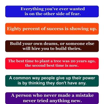 Entrepreneur Quotes Fridge Magnets