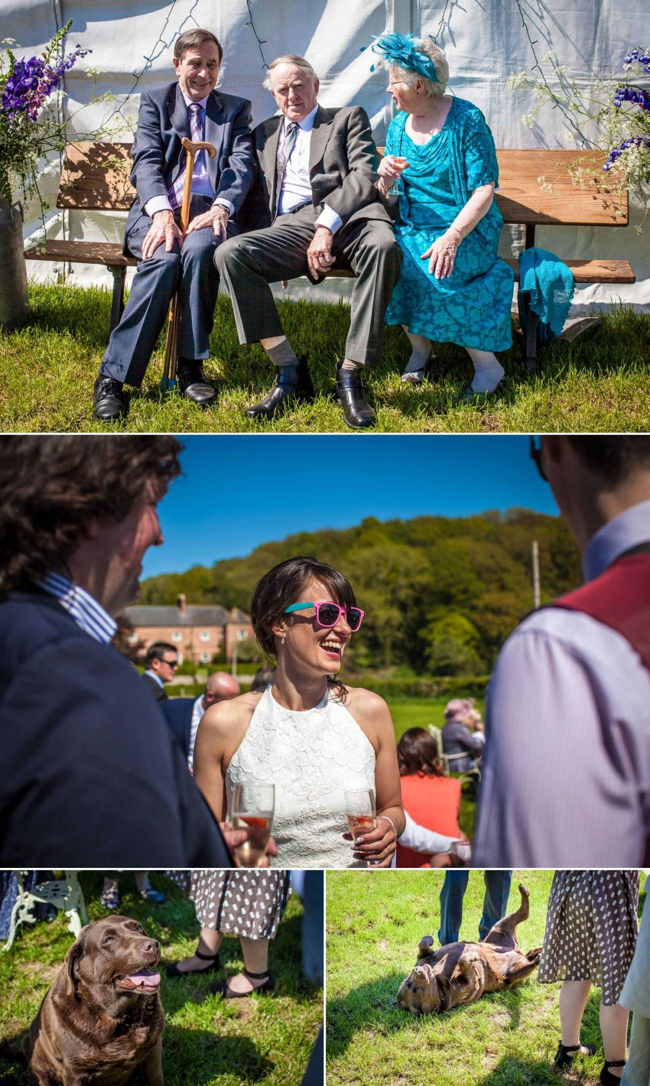 wedding photography of couple with guests north wales