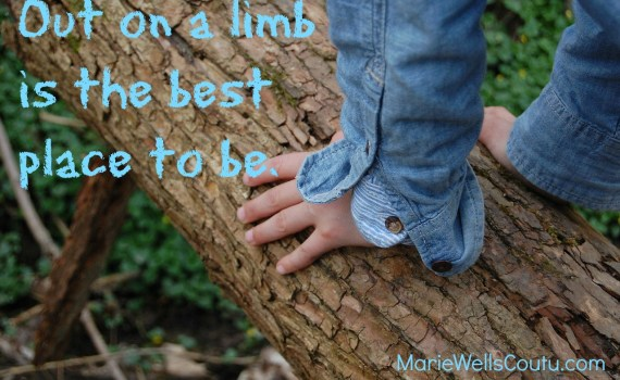 Out on a limb is the best place to be.