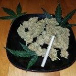Blueberry Autoflower Buds with Joint on Plate