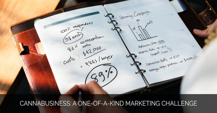 Cannabusiness- A One-of-a-Kind Marketing Challenge - Marijuana Marketing Xperts