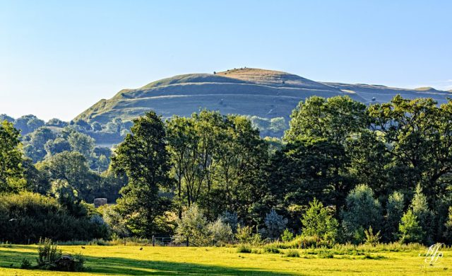 Hambledon Hill from Abergavenny Farm near Ridgeway Lane.