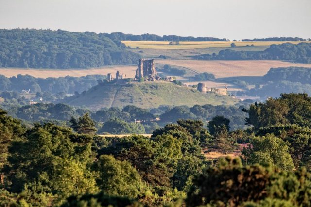 Distant view of Corfe Castle from Arne