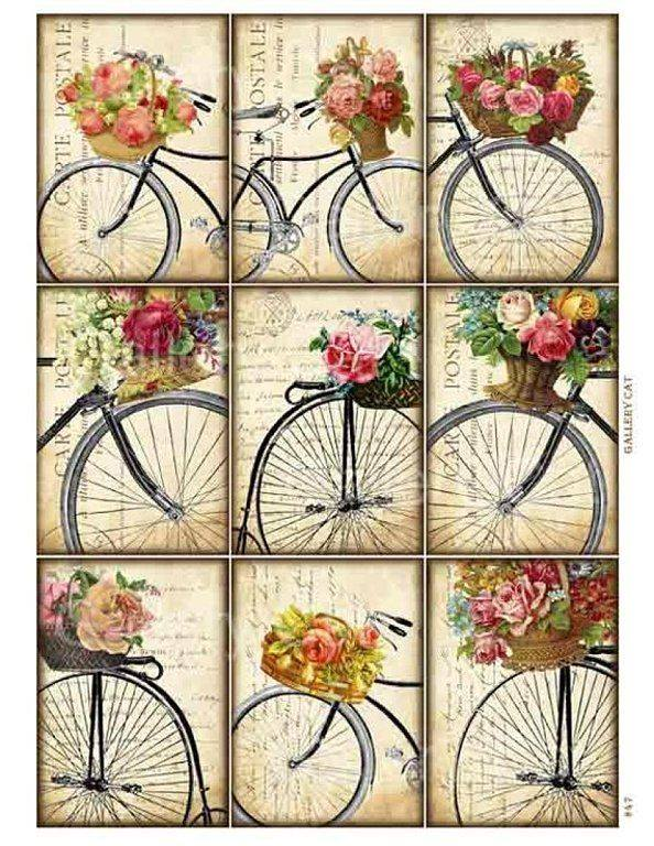 laminas bicicletas (15)
