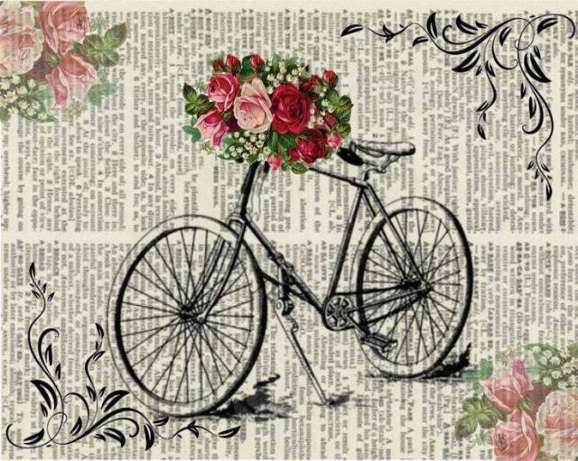 laminas bicicletas (20)
