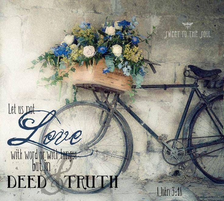 laminas bicicletas (24)