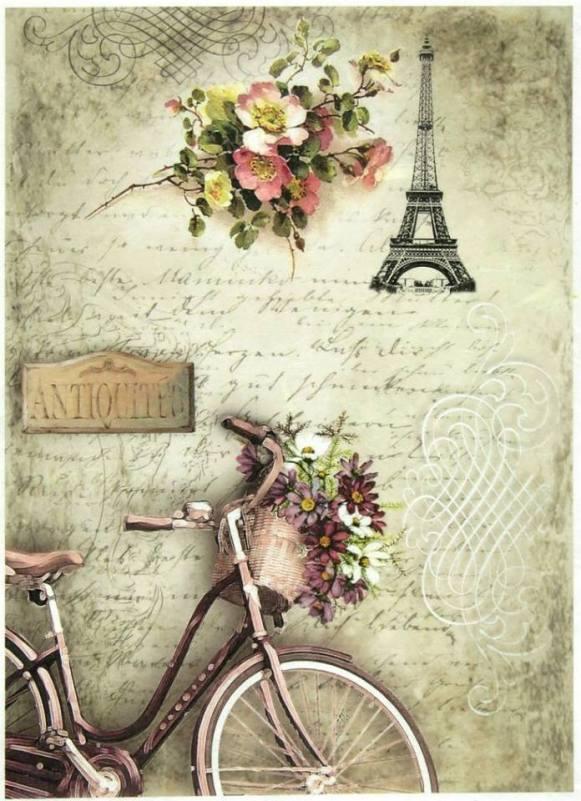laminas bicicletas (4)