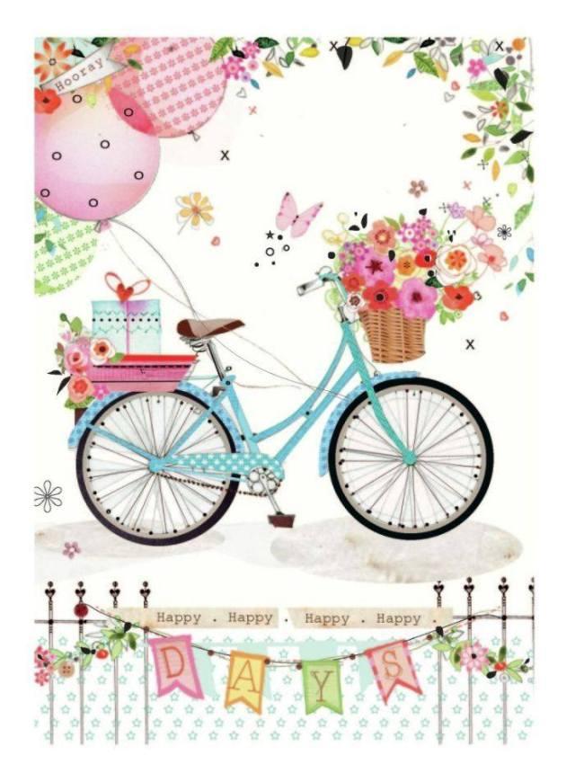 laminas bicicletas (7)