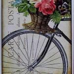 laminas bicicletas (8)