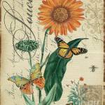 mariposas-decoupage-11