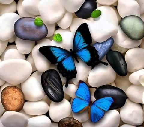 mariposas-decoupage-17
