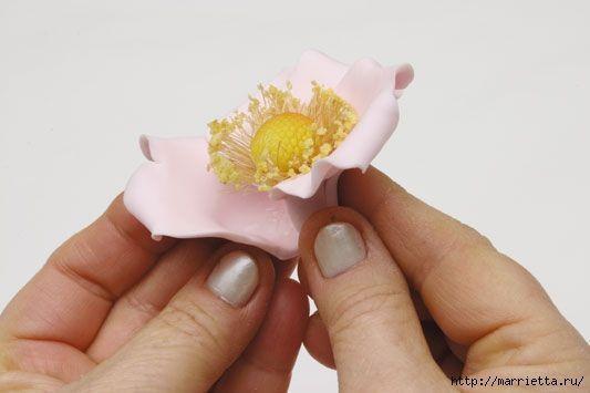 rosa-porcelana-fria-12