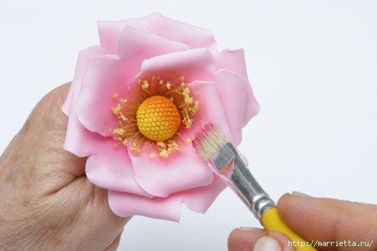 rosa-porcelana-fria-32